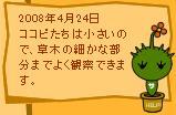 今日はこんな日4/24